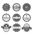 Retro stamps and badges vector