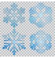 Set of transparent snowflakes vector