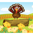 Turkey background vector