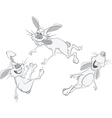 Rabbits cartoon vector