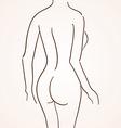 Female body silhouette vector