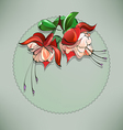 Floral frame fuchsia vector