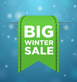 Winter sale big green ticket vector