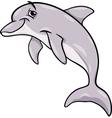 Dolphin animal cartoon vector