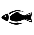 Isolated icon fish symbol vector