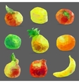 Set of low poly fruits vector