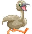 Emu cartoon vector