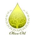 Olive oil label or emblem vector