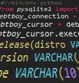 Pyton code vector