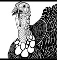 Turkey bird head as thanksgiving symbol vector