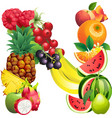 Letter n composed of different fruits with leaves vector