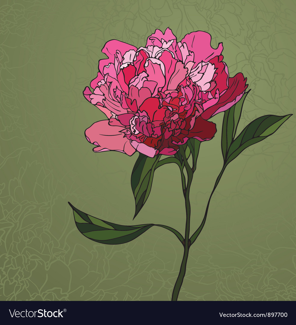 Peony stained glass window vector | Price: 1 Credit (USD $1)