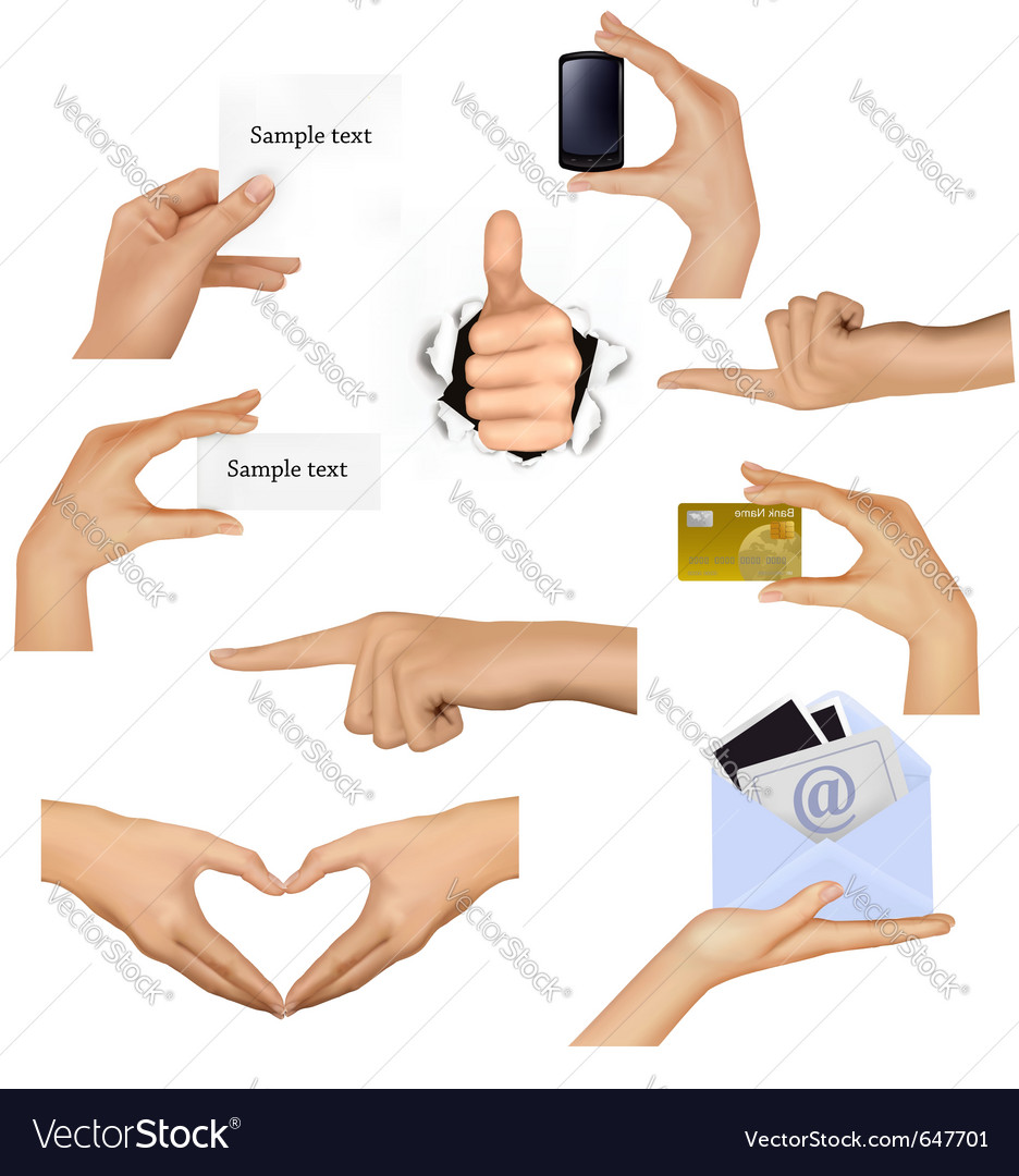 Hands holding different business objects vector | Price: 3 Credit (USD $3)
