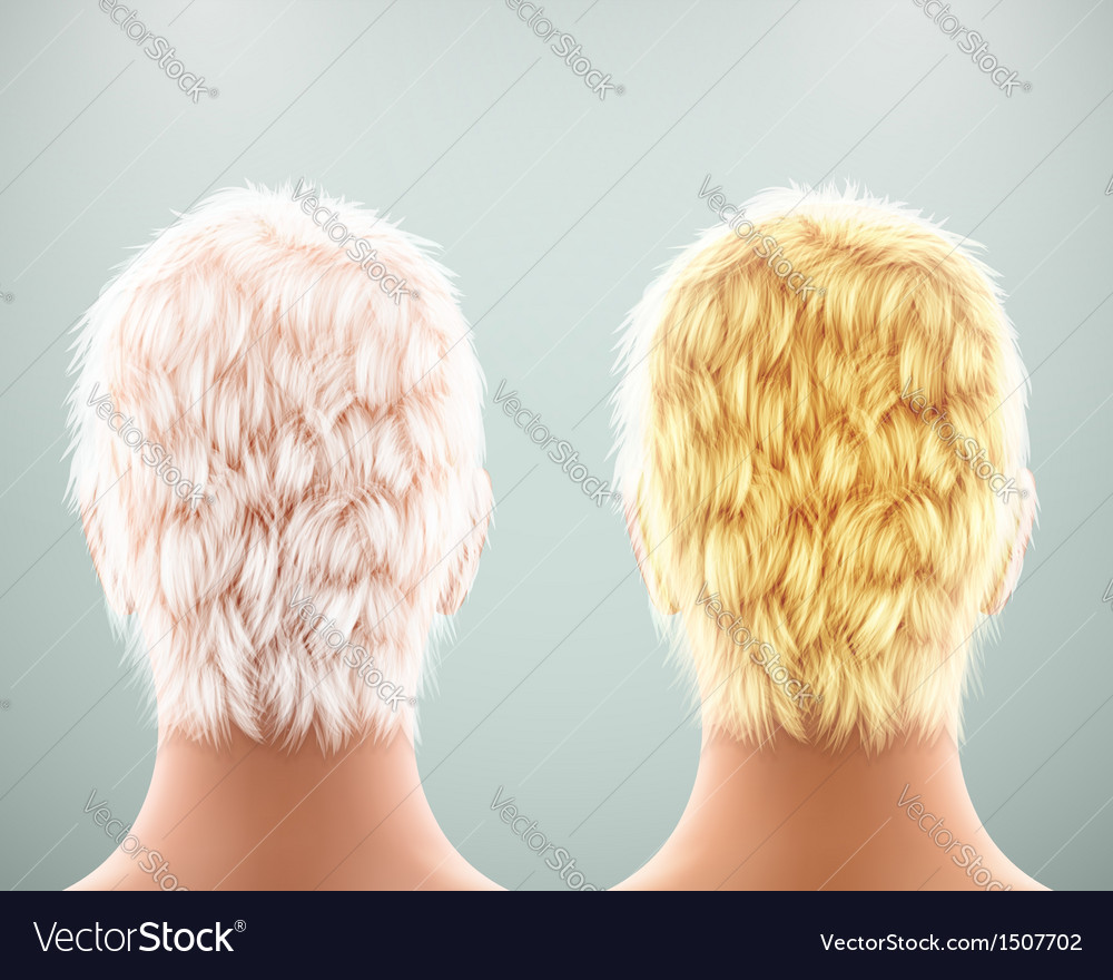 Back of head vector | Price: 1 Credit (USD $1)