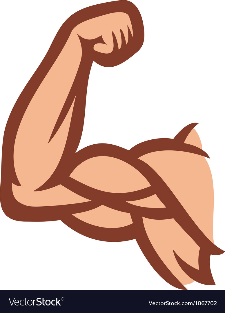 Biceps - arm showing muscles vector | Price: 1 Credit (USD $1)