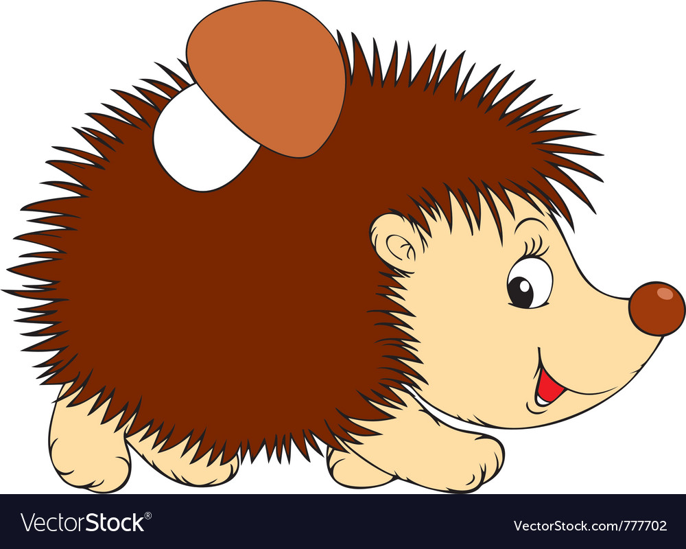 Hedgehog vector | Price: 3 Credit (USD $3)