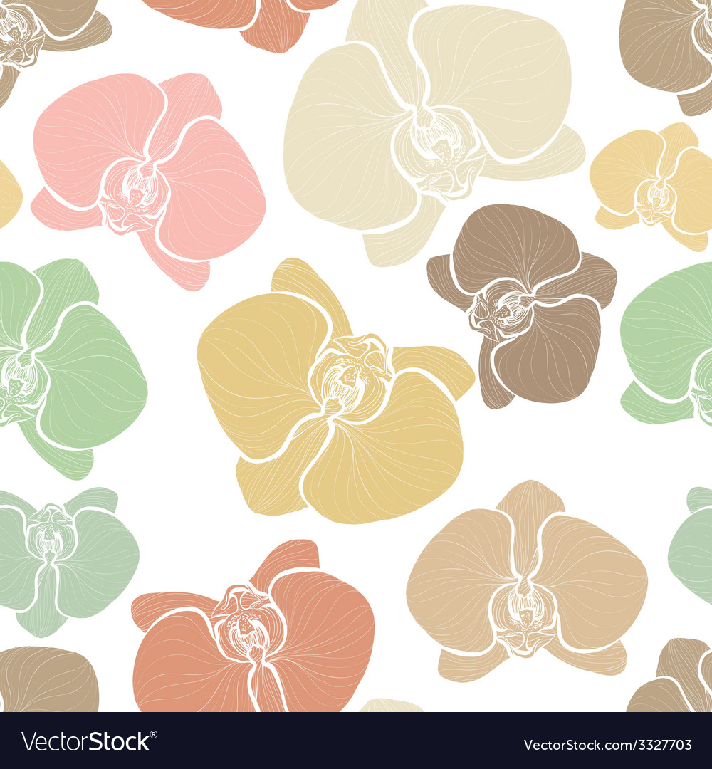 Orchids6 vector   Price: 1 Credit (USD $1)