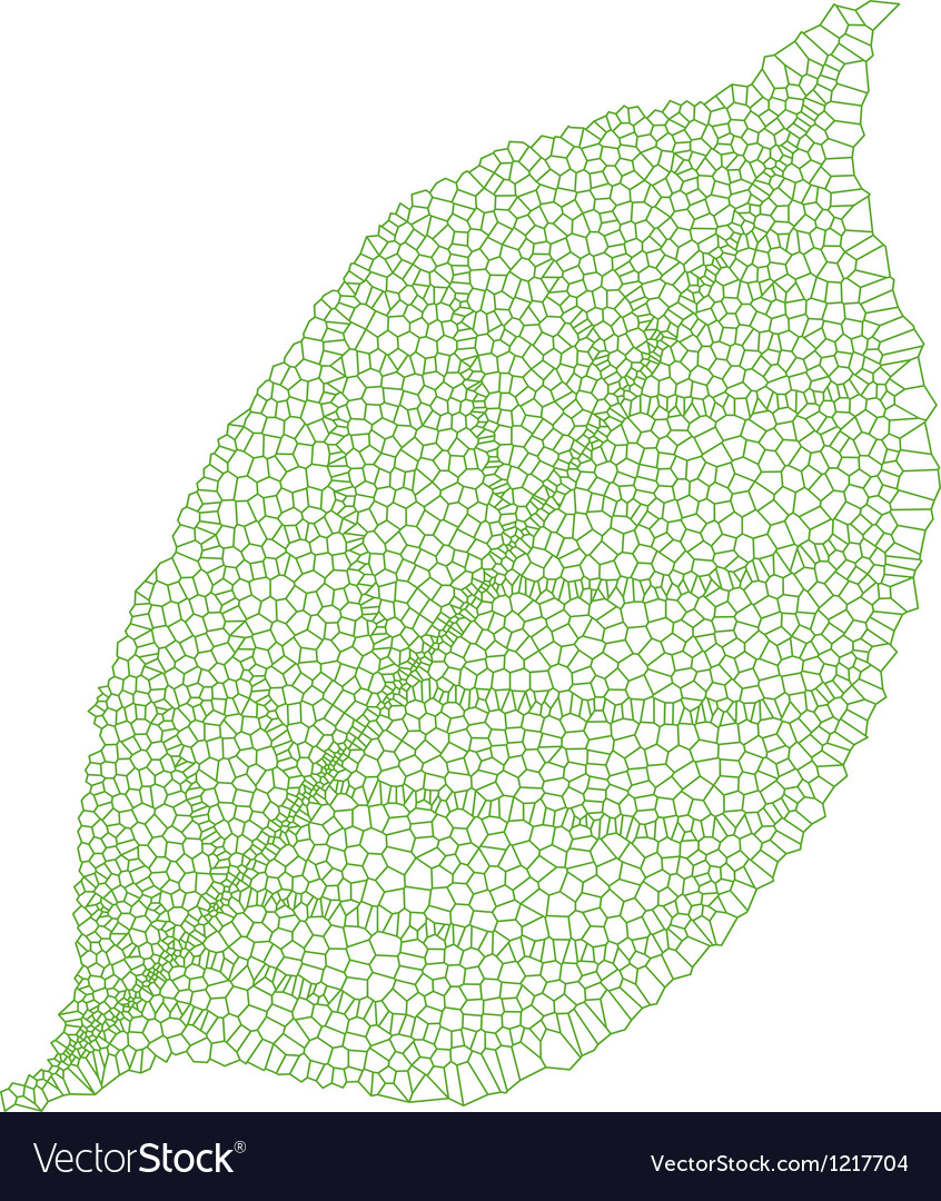 Green vein leaf vector | Price: 1 Credit (USD $1)