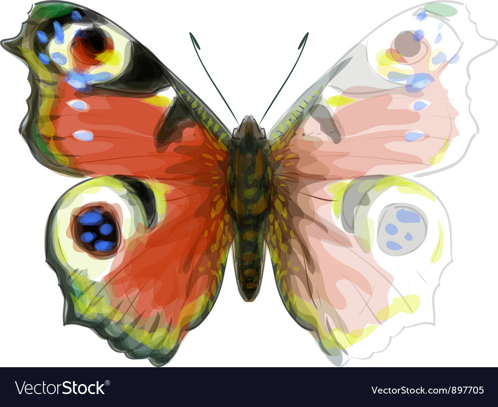 Watercolor butterfly vector | Price: 1 Credit (USD $1)