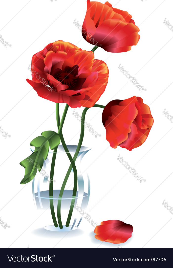 Flower poppy vector   Price: 1 Credit (USD $1)