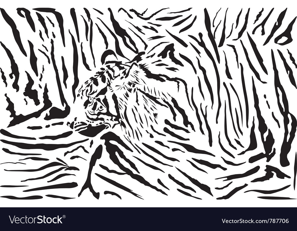 Tiger pattern background vector | Price: 1 Credit (USD $1)