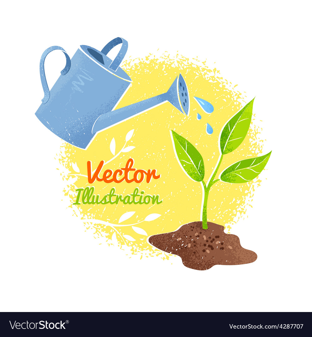Flower and watering can vector | Price: 1 Credit (USD $1)