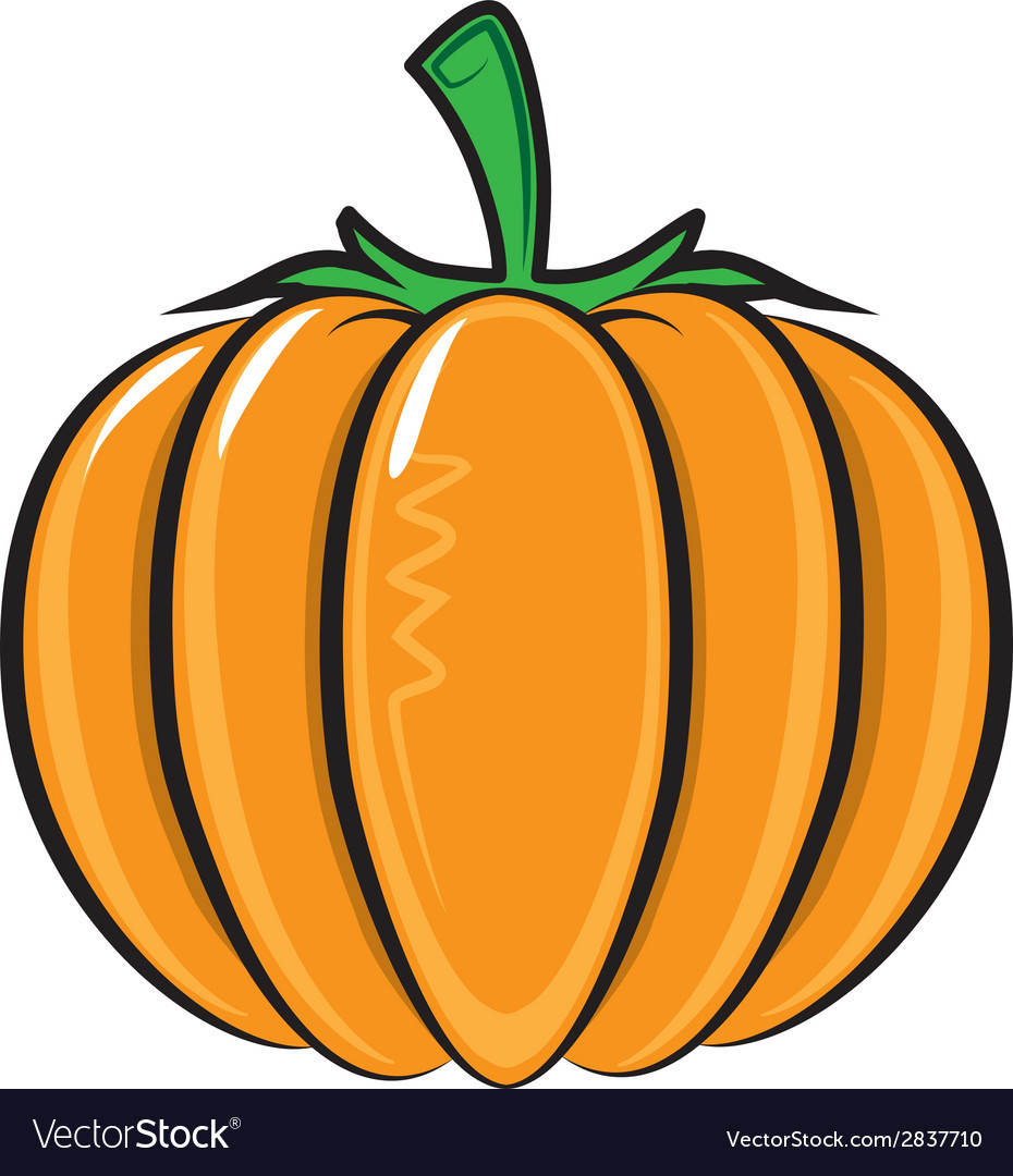 Pumpkin isolated on white vector | Price: 1 Credit (USD $1)