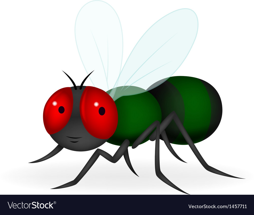 Green fly cartoon vector | Price: 1 Credit (USD $1)