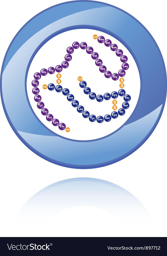 Human insulin molecule vector | Price: 1 Credit (USD $1)