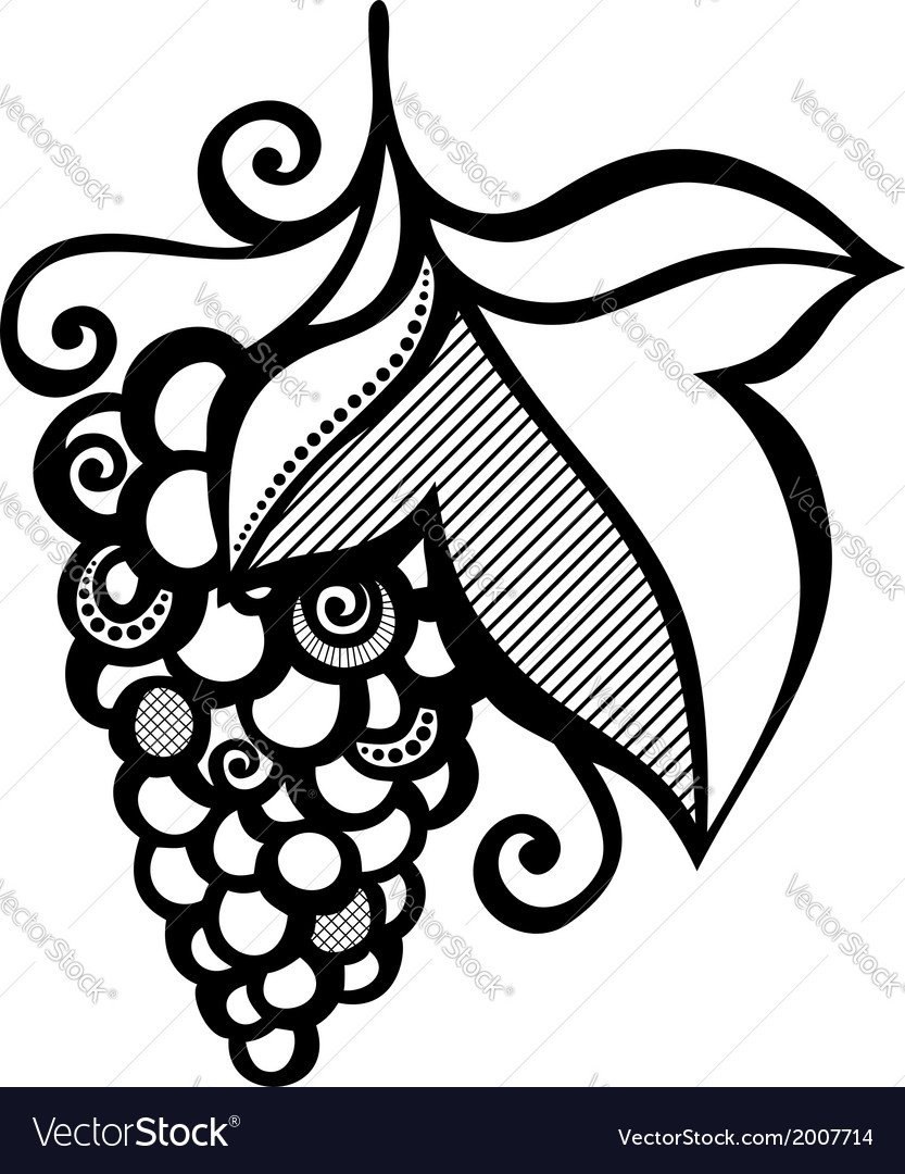 Beautiful branch of grapes vector | Price: 1 Credit (USD $1)