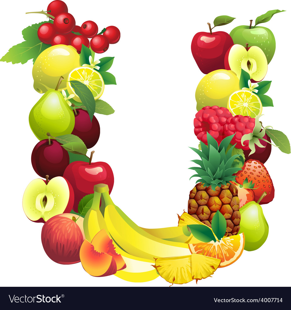 Letter u composed of different fruits with leaves vector | Price: 1 Credit (USD $1)