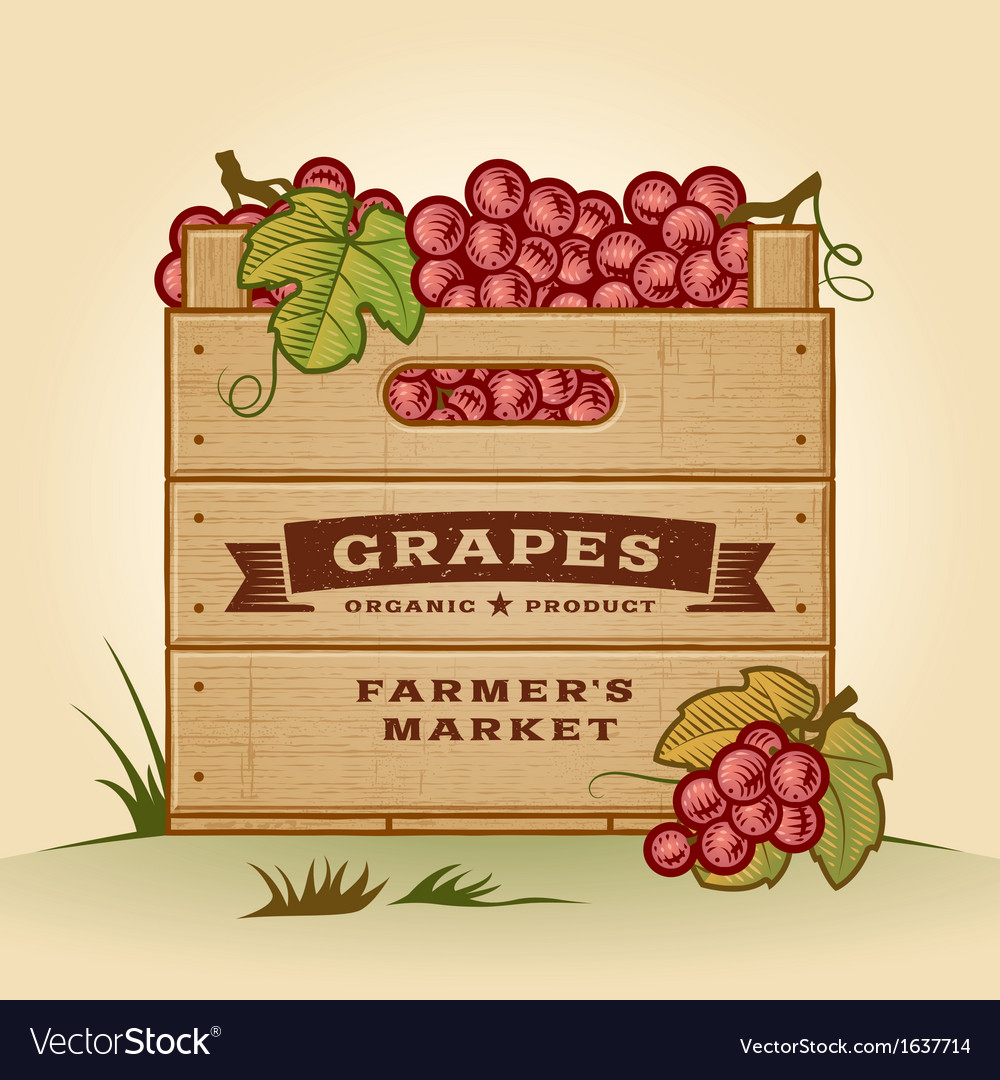 Retro crate of grapes vector | Price: 1 Credit (USD $1)