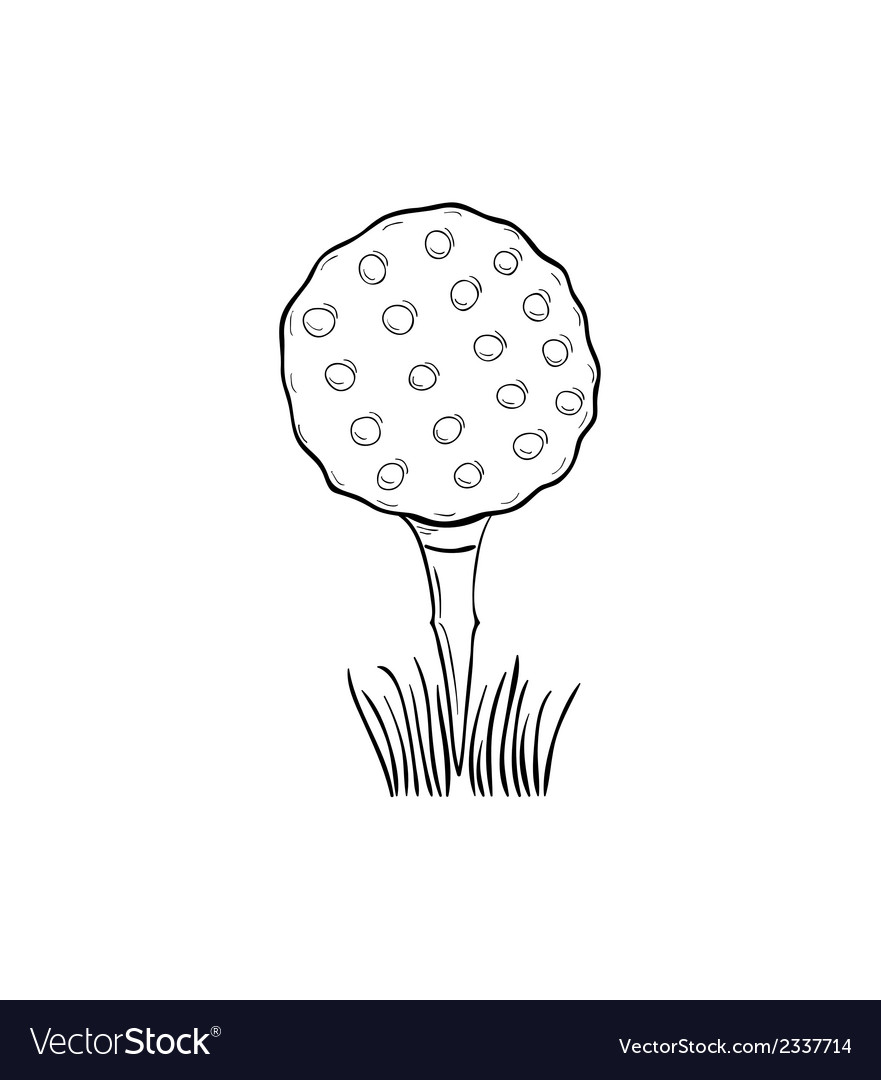 Sketch of the golf ball vector | Price: 1 Credit (USD $1)