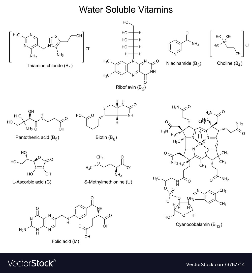Structures formulas of watersoluble vitamins vector | Price: 1 Credit (USD $1)