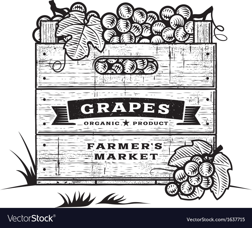 Retro crate of grapes black and white vector | Price: 1 Credit (USD $1)