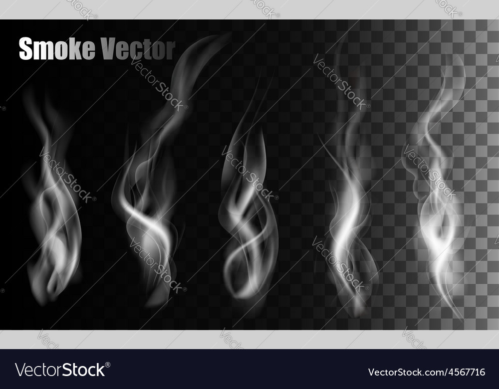 Smoke on transparent background vector | Price: 1 Credit (USD $1)