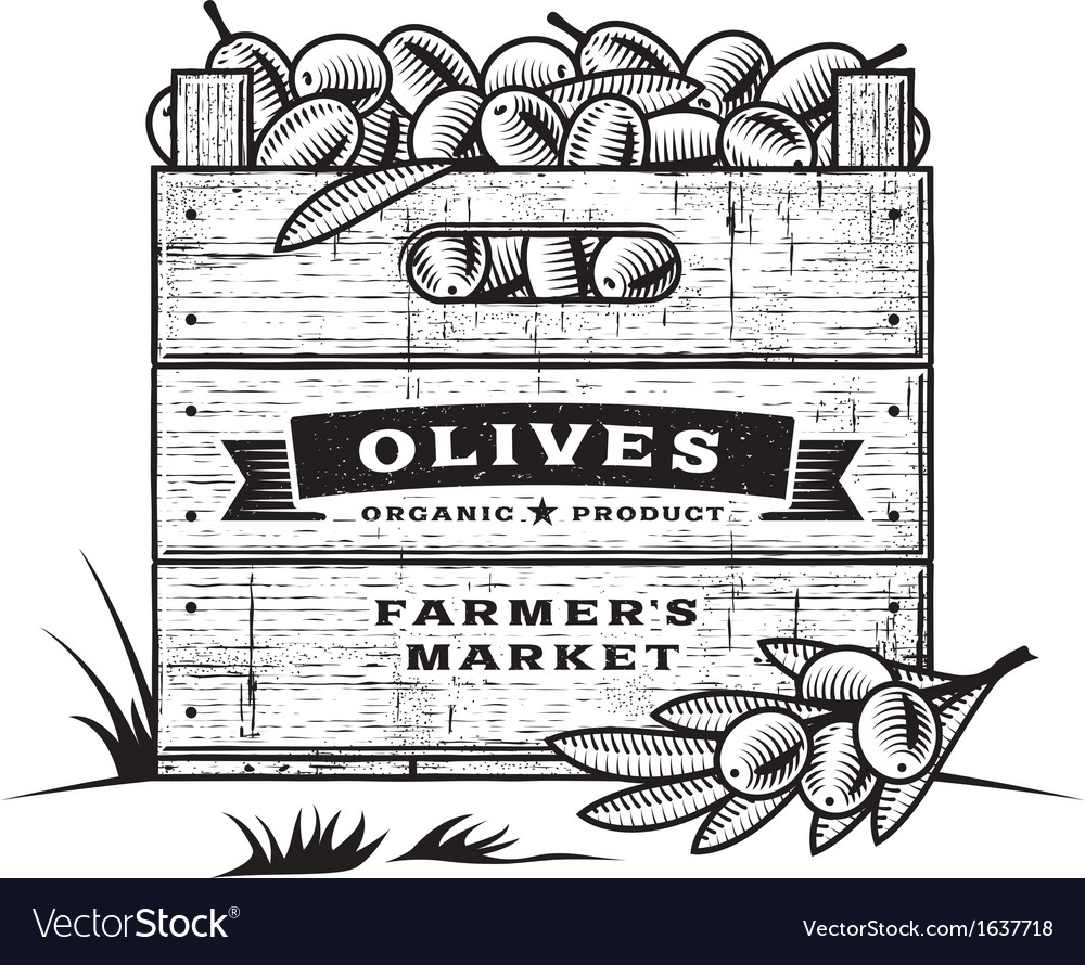 Retro crate of olives black and white vector | Price: 1 Credit (USD $1)