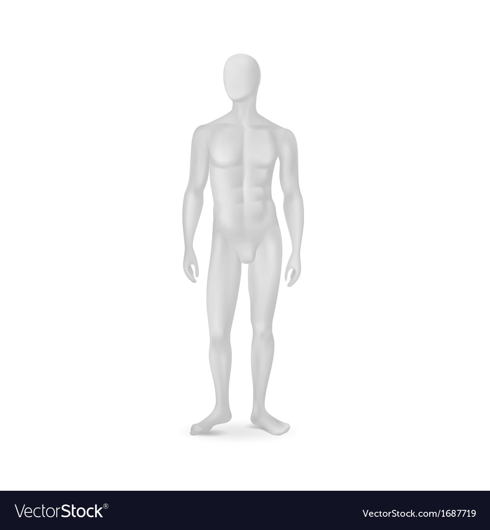 Isolated male mannequin vector | Price: 1 Credit (USD $1)