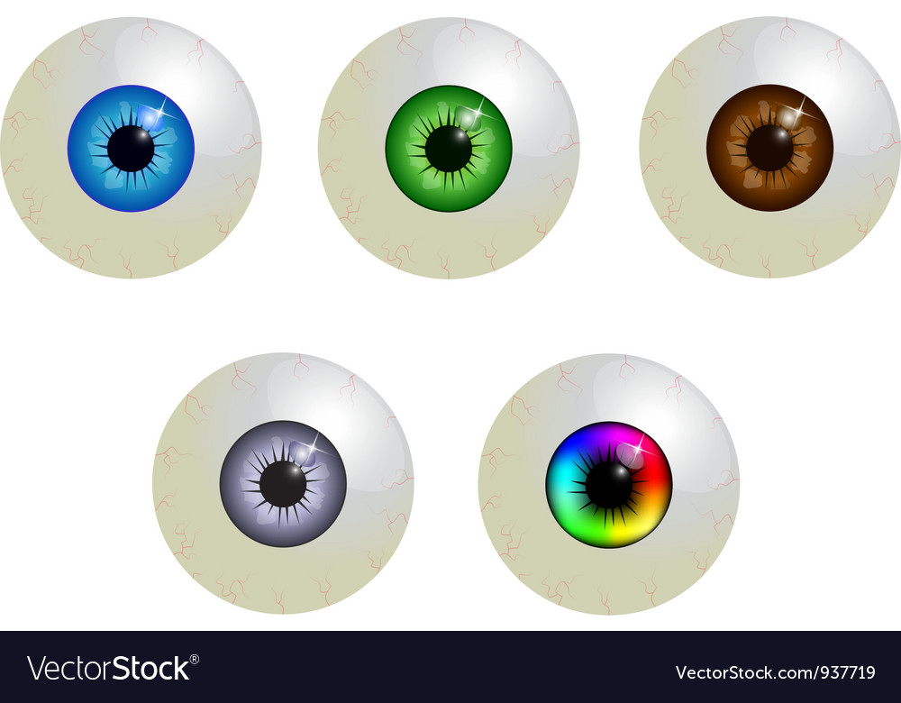 Set of eyeballs vector | Price: 1 Credit (USD $1)