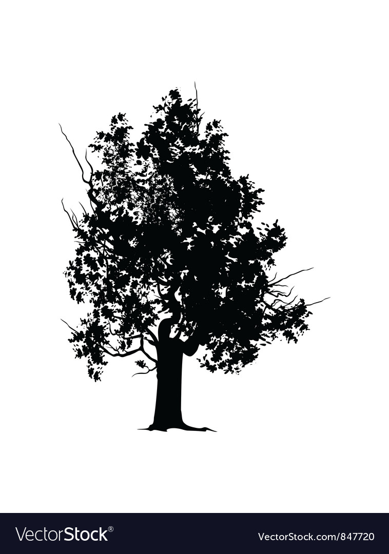 Old tree silhouette vector | Price: 1 Credit (USD $1)