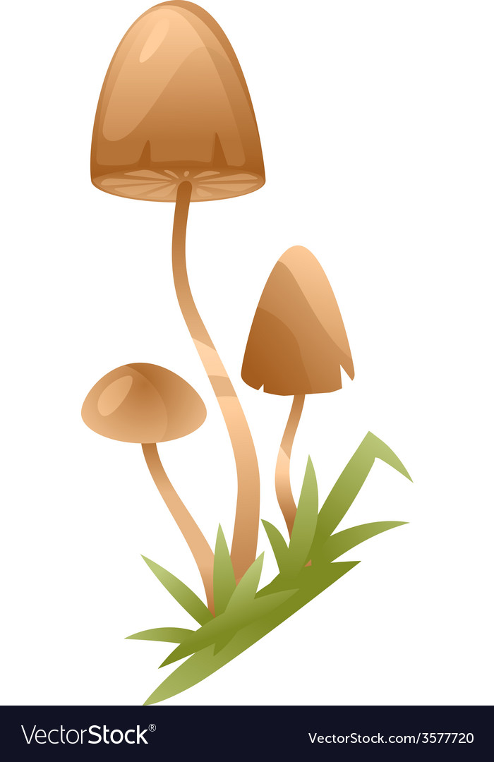 Psychedelic mushrooms vector | Price: 1 Credit (USD $1)