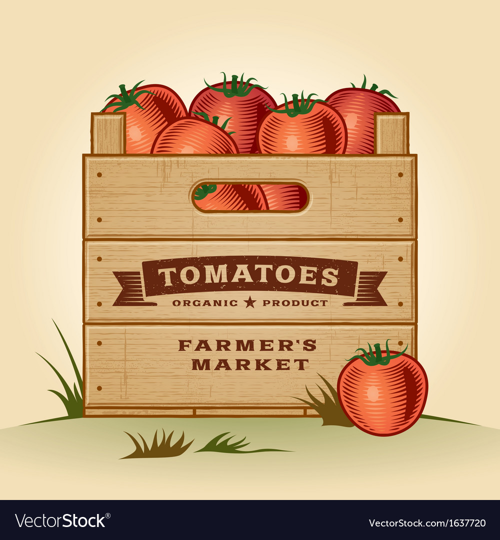 Retro crate of tomatoes vector | Price: 1 Credit (USD $1)