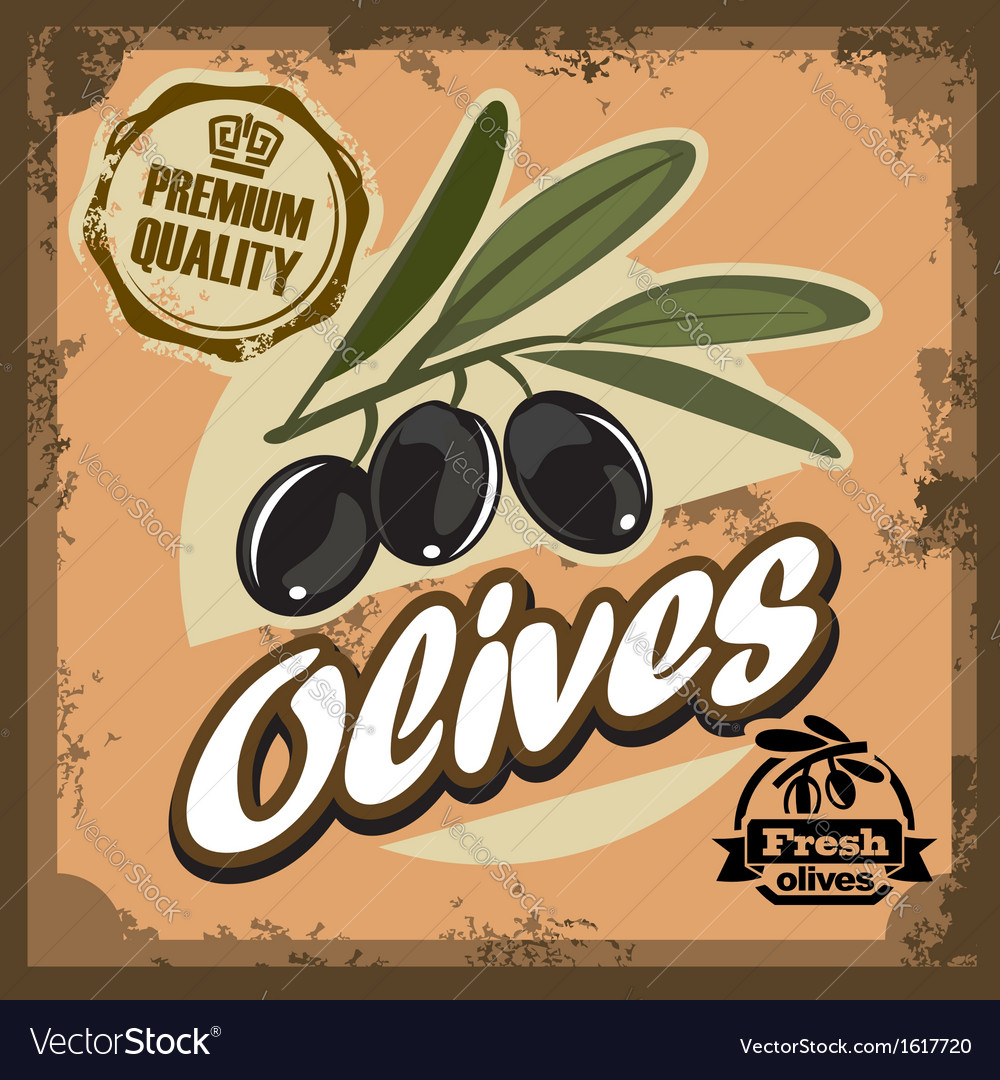 Vintage olive sign vector | Price: 1 Credit (USD $1)