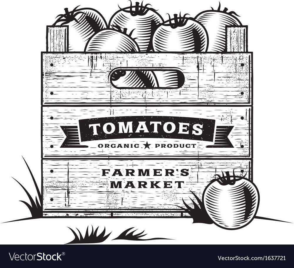 Retro crate of tomatoes black and white vector | Price: 1 Credit (USD $1)