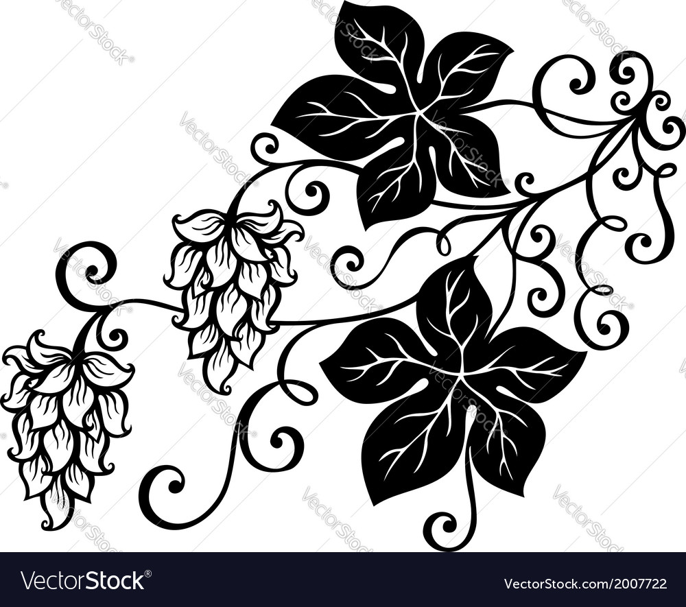 Decorative bush hop vector | Price: 1 Credit (USD $1)