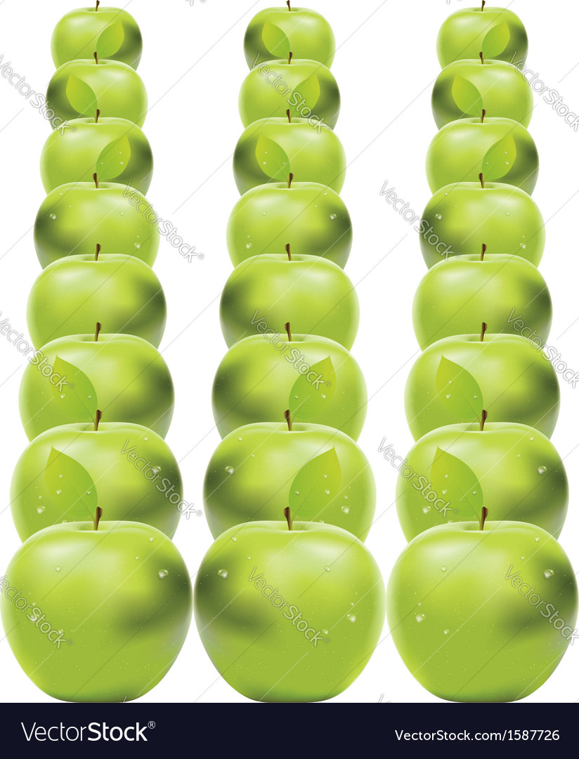 Green apples in row vector | Price: 1 Credit (USD $1)