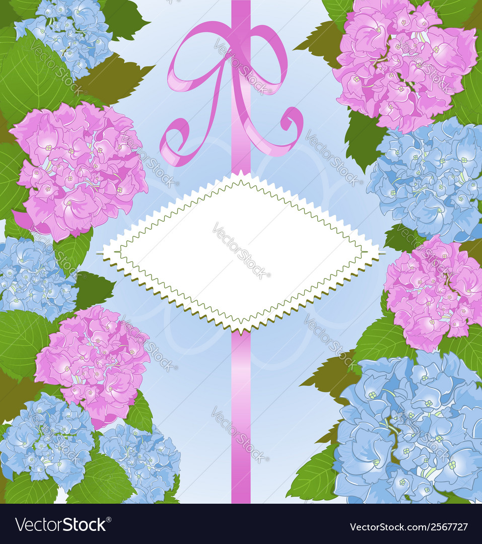 Invitation card with hydrangea flowers vector | Price: 1 Credit (USD $1)
