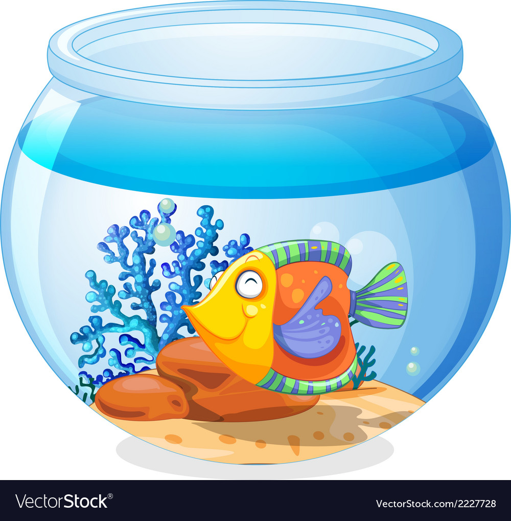An aquarium with a fish vector | Price: 1 Credit (USD $1)