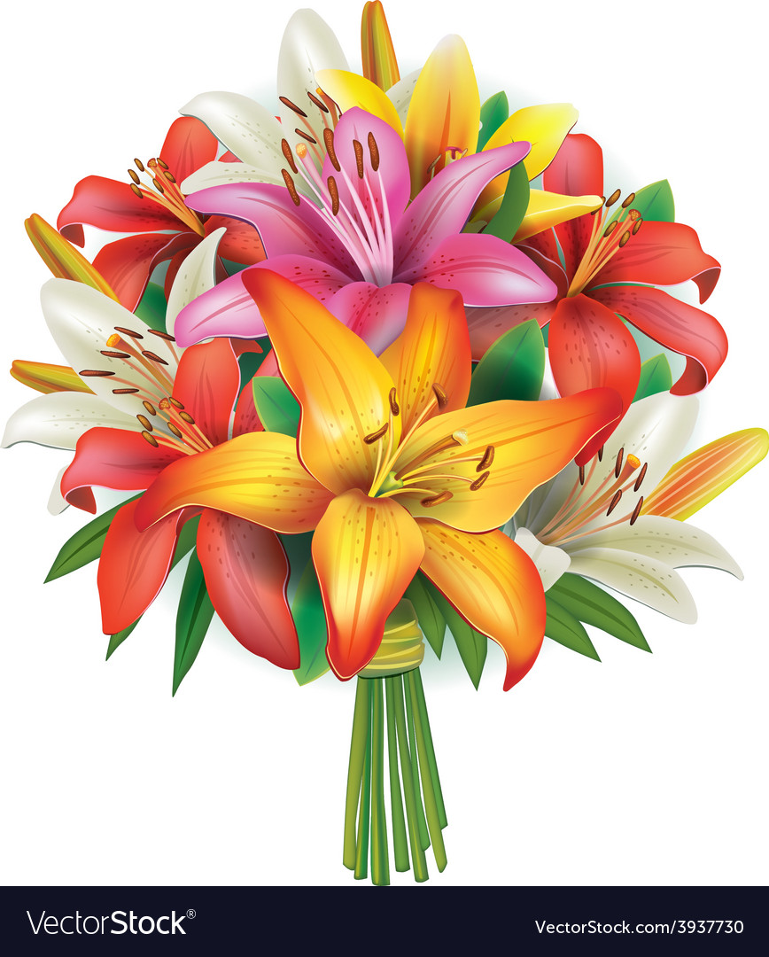 Bouquet of lilies vector | Price: 3 Credit (USD $3)