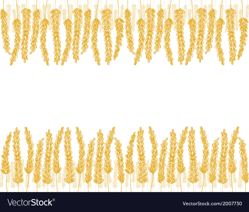 Wheat doodles background vector | Price: 1 Credit (USD $1)